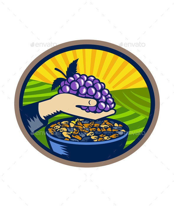 Hand Holding Grapes Raisins Oval Woodcut - Food Objects