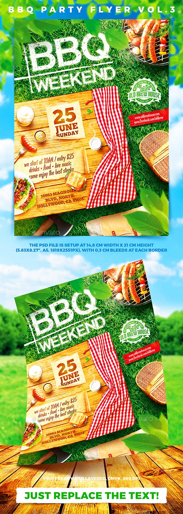BBQ Party Flyer vol.3 - Holidays Events