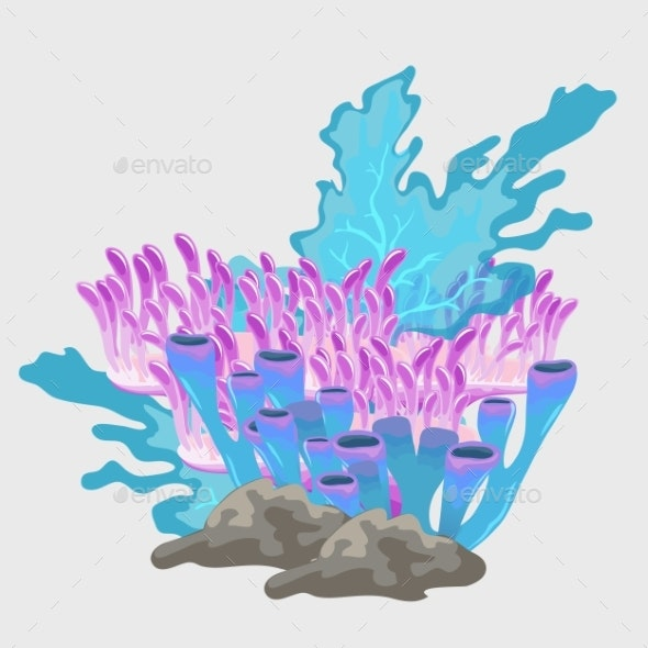 Bouquet Of Blue And Pink Coral, Underwater Set - Landscapes Nature
