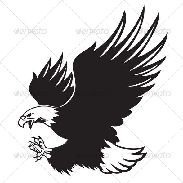 Bald Eagle Graphics, Designs & Templates from GraphicRiver