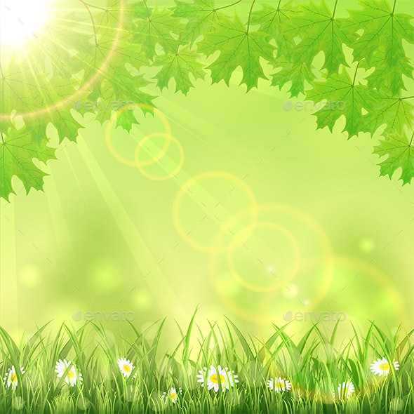 Summer Green Nature Background - Seasons Nature