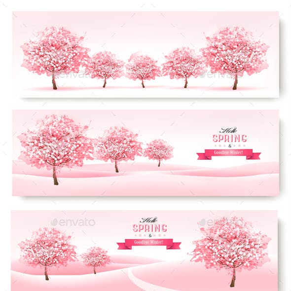 Three Spring Banners with Pink Cherry Blossom