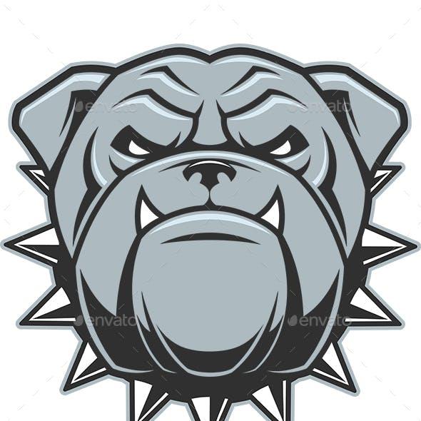 Head of a Fierce Bulldog
