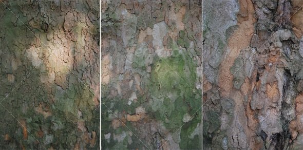 Bark 3-pack - Wood Textures