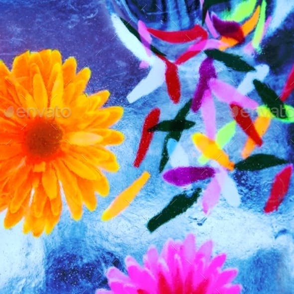 Multicolored Flowers Frozen Into The Ice Box