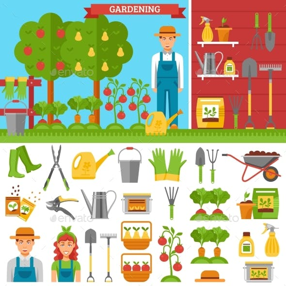 Growing Vegetables and Fruits in Garden