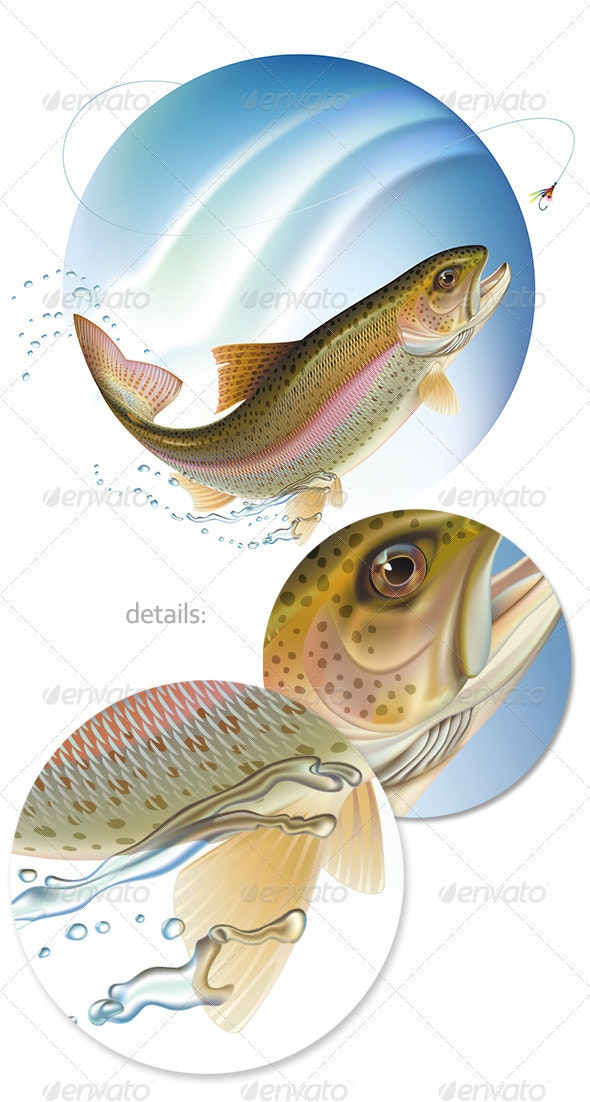 Jumping trout - Animals Characters