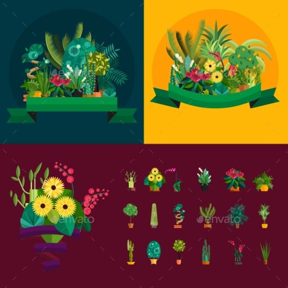 Illustration Of Houseplants, Indoor And Office
