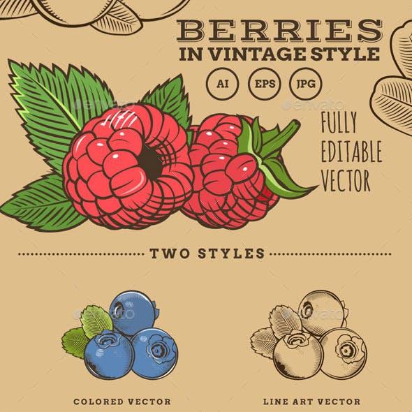 Berries in Vintage Style