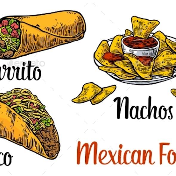 Mexican Traditional Food Set Burrito, Tacos, Chili