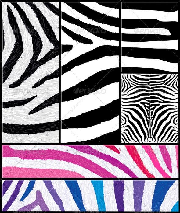Zebra Pattern Set with Variations - Patterns Decorative