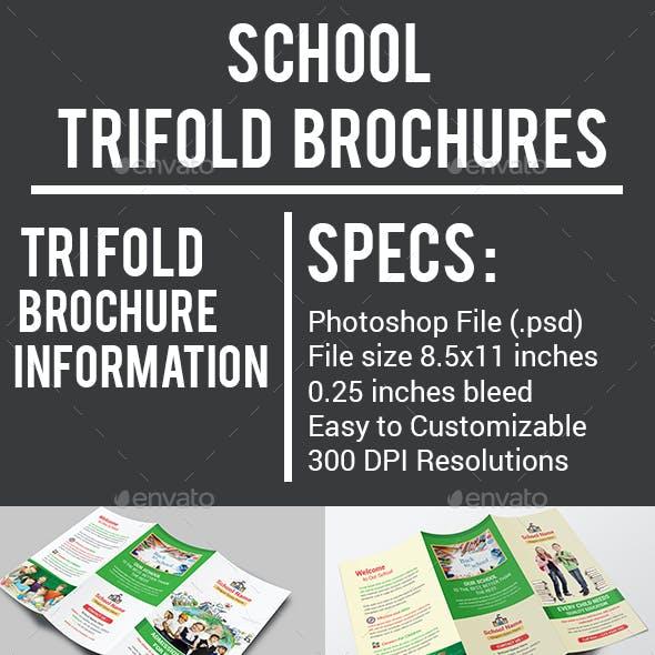 School Trifold Brochures