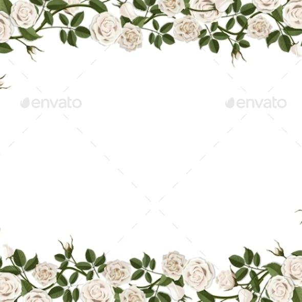 Square Border of White Roses
