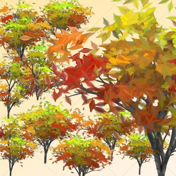 Trees-Auttumn - Flowers & Plants Nature