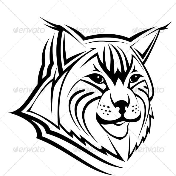 Head of lynx