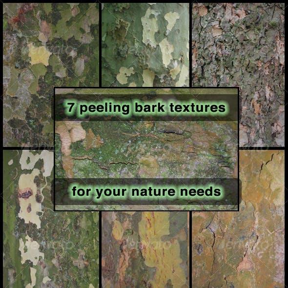 Peeling Bark  7-Pack
