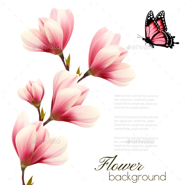 Nature Background with Blossom Branch of Pink Magnolia