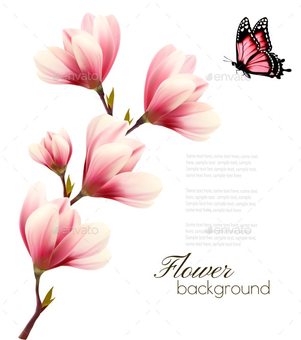 Nature Background With Blossom Branch Of Pink Magnolia By Almoond
