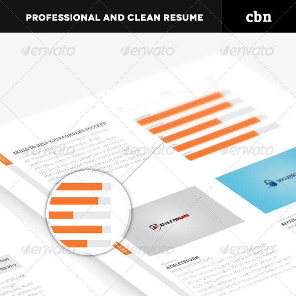 Professional and Clean Resume
