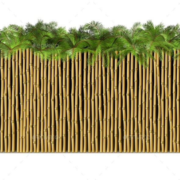 Vector Bamboo Border with Palm