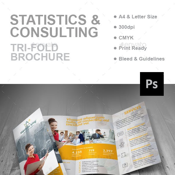 Statistics And Consulting Trifold Brochure