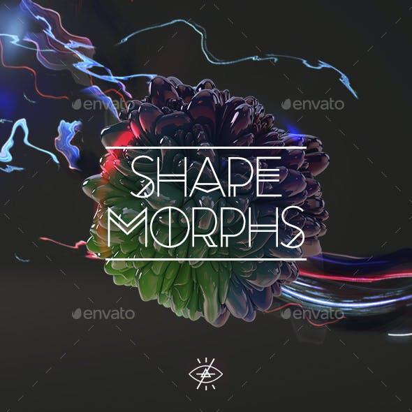 Shape Morphs