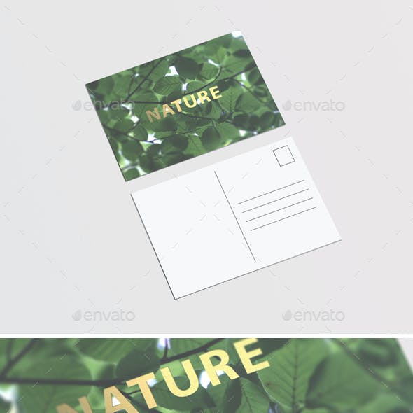 A6 Postcard / Flyer Mock-up