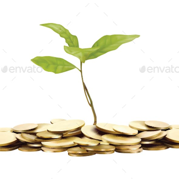 Gold Coins and Green Sprout