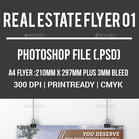 Real Estate Flyer 01
