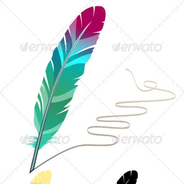 Many-coloured feather isolated on white background