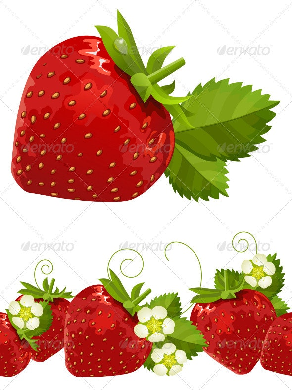 Ripe strawberries, leaves and flowers. Vector. - Food Objects