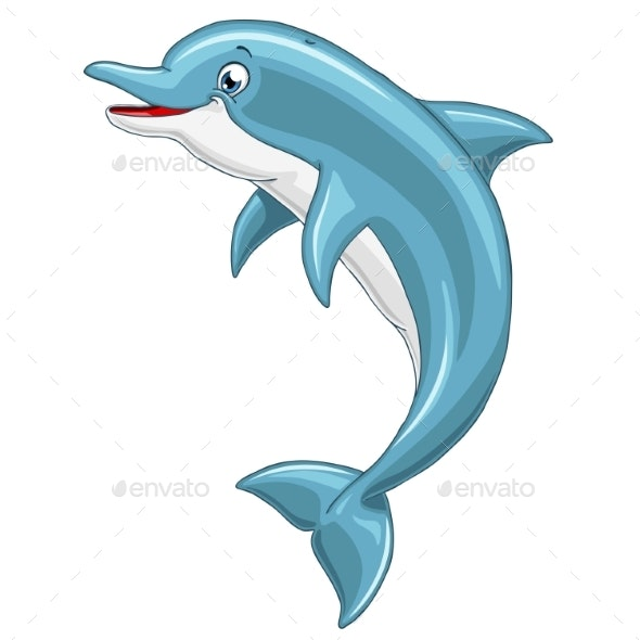 Dolphin on White Background
