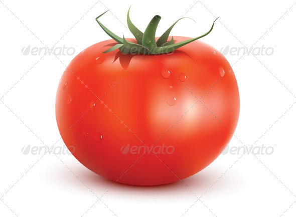 Tomato - Food Objects
