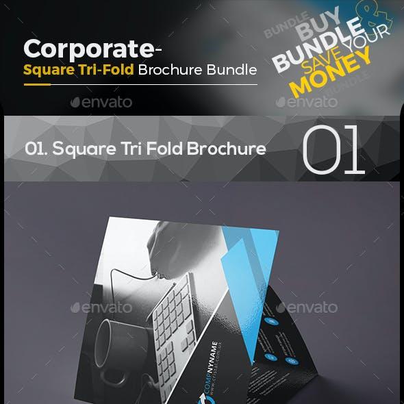 Square Tri Fold Brochure Bundle