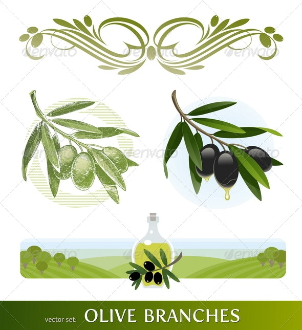 Olive Branches and Oil - Food Objects