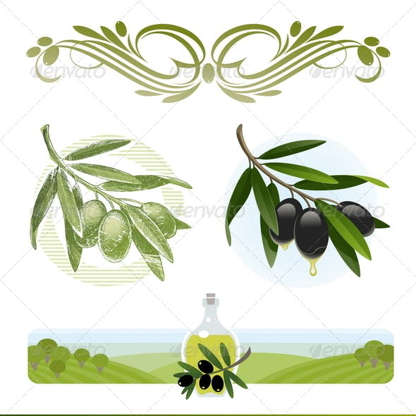 Olive Branches and Oil