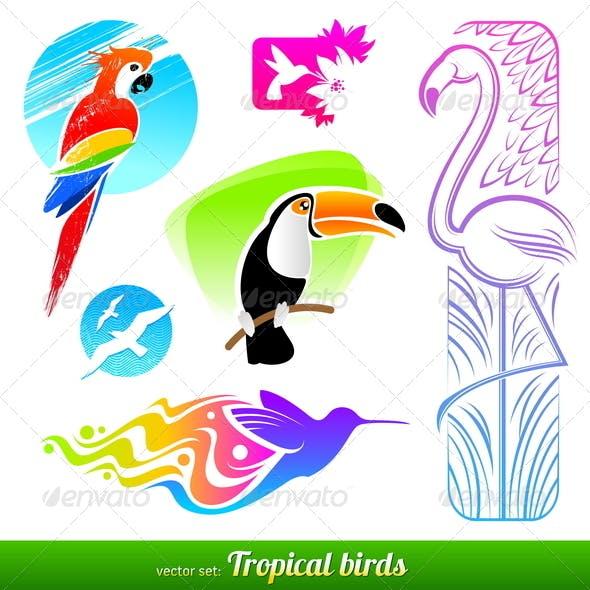 Set of Tropical Birds