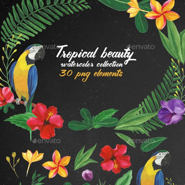 30 Tropical Floral Watercolor Elements
