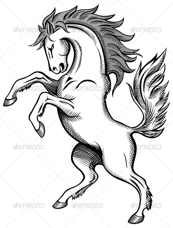Horse Drawing - Animals Characters