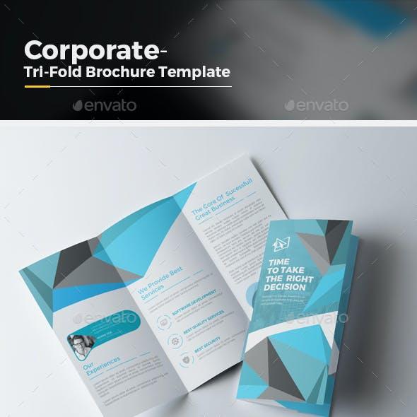 Pro Tri fold Brochure