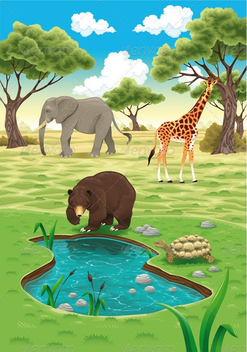 Animals in the nature.  - Animals Characters