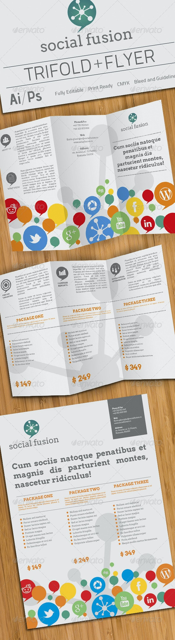 Social Fusion Trifold And Flyer - Catalogs Brochures