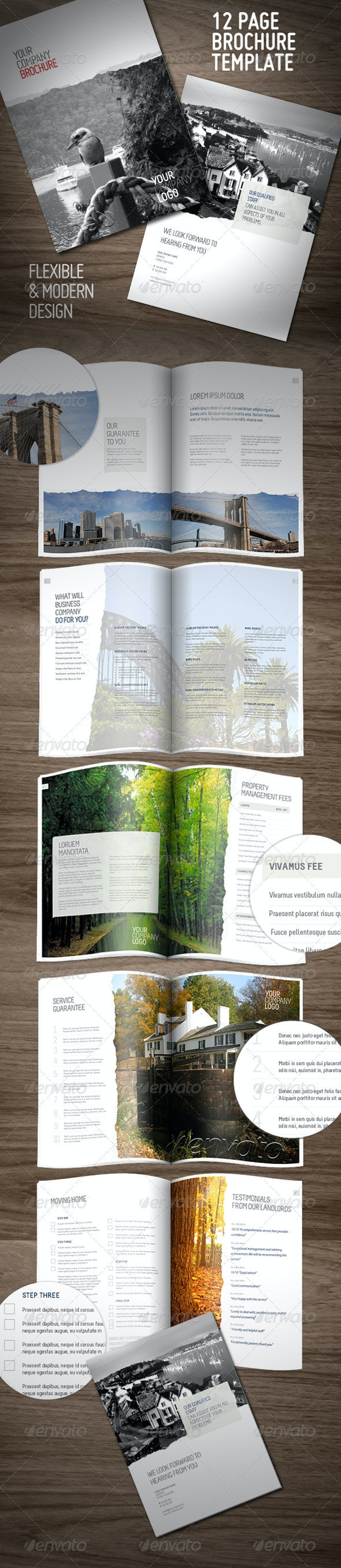 Clean Professional Brochure (12 pages) - Corporate Brochures
