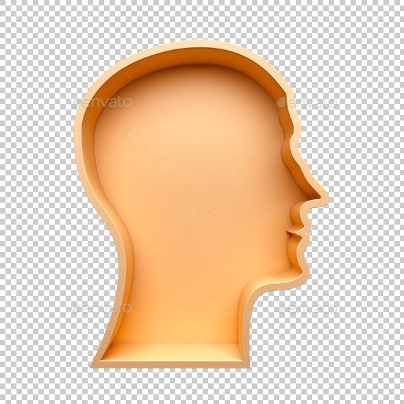 Head shape 3d