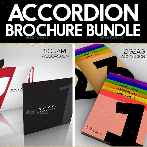 Accordion Brochure/Flyer Mock Up Bundle