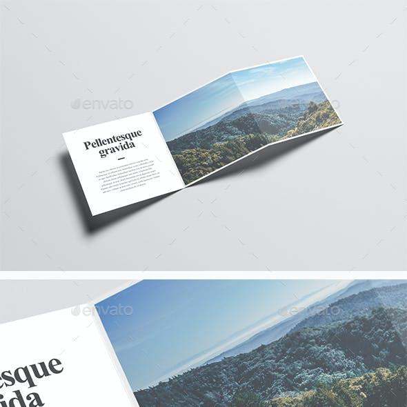 Square Z-Fold Brochure Mock-Up