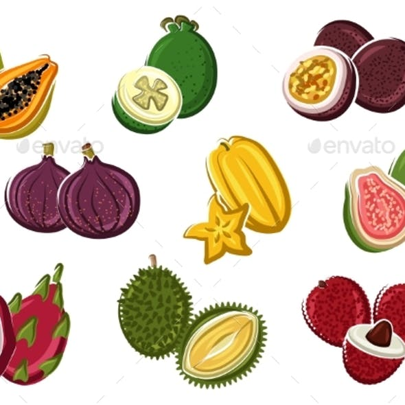 Assortment Of Fresh Harvested Tropical Fruits