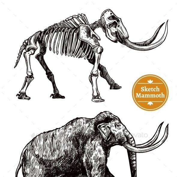 Sketch Hand Drawn Mammoth