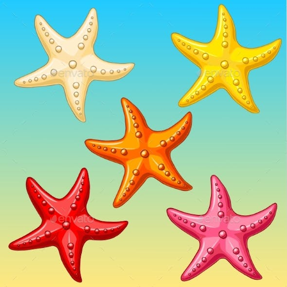 Set Five Color Starfish On Yellow-blue