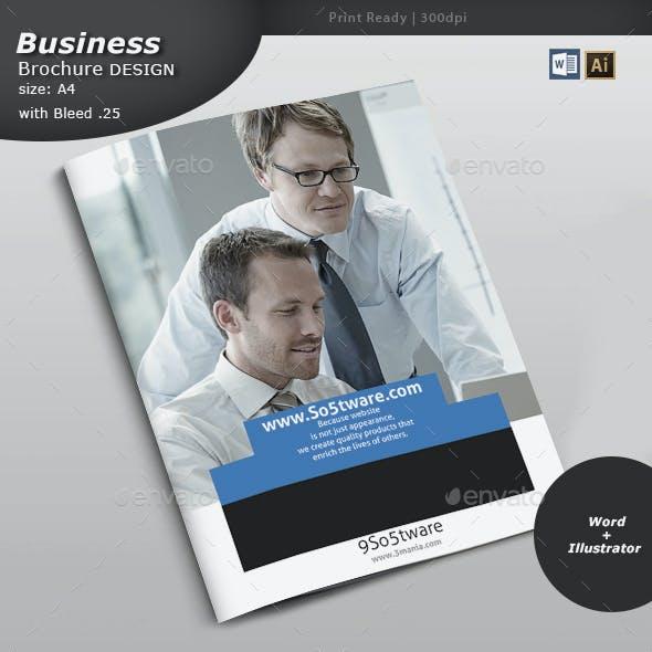 Software Firm Brochure Design
